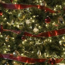 Božićna drvca Images?q=tbn:ANd9GcQPyLP5_PVh7g1hcguTA_zRjH6HKIPXBM5WJT0y4eXe4GOs8uLj