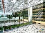 Singapore Changi Airport Terminal 3,WorldArchitectureNews ...