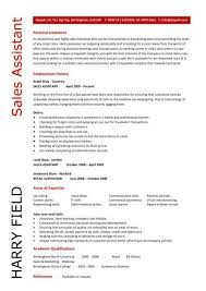 Charity Work Personal Statement Examples Charity Resume Template         Resume Examples  Fresh Graduate Resume Example With Personal Profile In Music Industry And Major Achievements