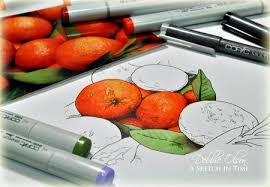 copic markers ???,أنيدرا