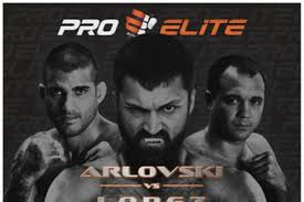 ProElite: Arlovski vs Lopez (Videos)