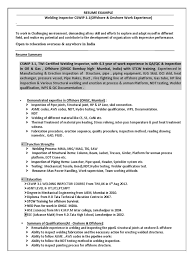 Resume Examples Retail Manager by Retail Manager Resume Examples 2 Retail Operations And Sales
