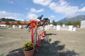 Hilde Schwarzkopf Cup 2010 - Reutte / Tirol - Bild 2 - Bild \u0026amp; Foto ...