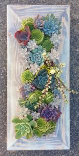 Diy Succulents 21 Creative Succulent Container Gardens To Diy Or Buy Now