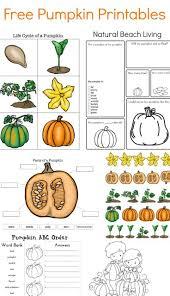 Halloween Printable Activities 371 Best Fall Pumpkin Images On Pinterest Fall Pumpkins