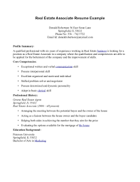 Sample Resume Qualifications List by Essay Writing Service Professional Help With Custom Writing Cv