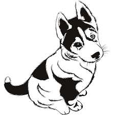 husky puppies coloring pages dab df husky photo shared by