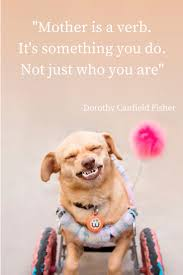Mother Day Quotes by 28 Best Holiday Mother U0027s Day Images On Pinterest Dog Mom
