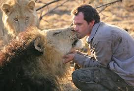 Ami des lions