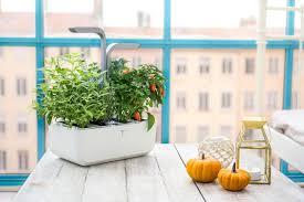 Garden Kitchen Design by Kitchen Garden Inhabitat Green Design Innovation