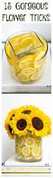 best 25 fruit kitchen decor ideas on pinterest tiered fruit