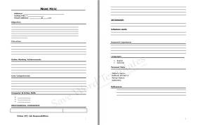 Example Of A Resume Format Professional Resume Format Download For