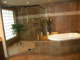 Pictures Of Small Bathrooms With Tub And Shower Bathroom Walk In Shower Lowes Tiny Bathroom Ideas Shower Kits