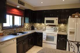 Dark Kitchen Cabinets With Backsplash Kitchen Cabinets Furniture Black Color Staining Oak Kitchen