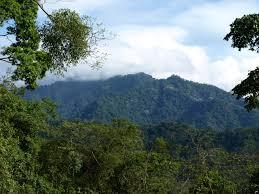 Sierra del Merendón