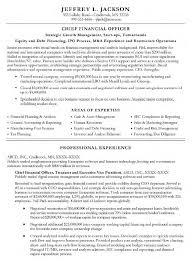Ecommerce Resume Sample by Cfo Resume Samples Resume Format 2017