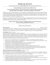 Senior Operating and Finance Executive Resume   finance resume examples