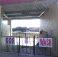 Self Service Car Wash And Vacuum Near Me Scrubby U0027s Car And Dog Wash Georgetown Texas