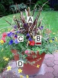 summer container garden recipes planters gardens and plants