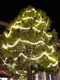 beautiful outdoor christmas lights for trees hall kitchen