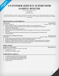 Resume Summary Examples Customer Service by Smart Ideas Customer Service Resume Example 6 Customer Service