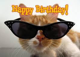 Cat Happy Birthday Gifcat And