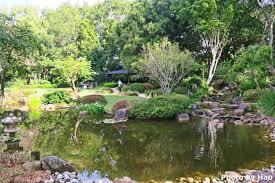 Brisbane City Botanic Gardens by Japan Or Australia Brisbane Botanic Gardens Trip Student Life