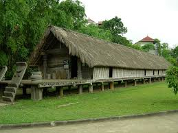 Vietnamese traditional stilt houses