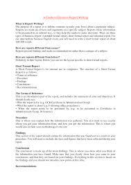 sample of report essay