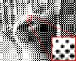 Image result for پردازش تصوير ديجيتال