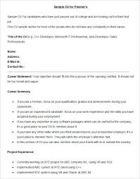 What Is Job Profile In Resume by Career Summary Example Resume Statements Examples Example