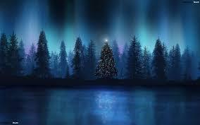 best and beautiful christmas trees around the world amazing tree