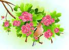 คำสำคัญ: ดอกไม้ นกขมิ้น ธนาคารต้นไม้ วัสดุและส่วนประกอบของเวกเตอร์ ...