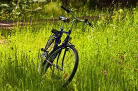 Nhà thơ nên đi xe đạp