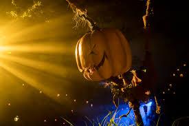 halloween horror nights 2015 orlando halloween horror nights 25 full review