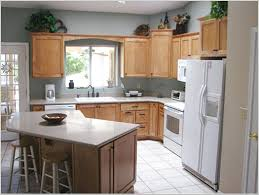 Functional Kitchen Ideas L Shaped Kitchen Gallery Designed For Beautiful Looking Ruchi
