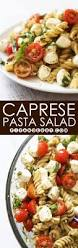 Pasta Salad Ingredients Best 25 Pasta Salad Recipes Ideas On Pinterest Pasta Salad