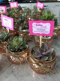 succulent baby shower favors my party creations pinterest