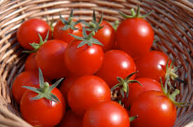 growing cherry tomatoes in containers or pots