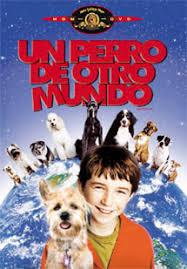 Un Perro De Otro Mundo (Good Boy)