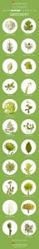 Pantone 2017 by 2017 Color Of The Year Greenery Flower Inspiration Flower