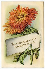 greeting for thanksgiving 119 best vintage thanksgiving images on pinterest vintage