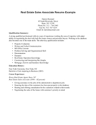 Resume Summary Of Qualifications Example  it director resume     happytom co Resume Examples  Examples Of A Resume Summary Examples Of A Resume Summary Resume Four