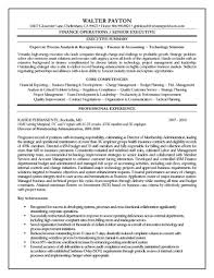 Professional Experience Highlights  Resume Examples  Finance Operations Or Senior Executive Summary For Expert In Analysis Reengineering Or Finance     Rufoot Resumes  Esay  and Templates