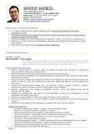 Online Marketing Manager Resume by Digital Marketing Resume Example Essaymafia Com