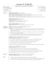The Best Resume Templates 2015 by Free Resume Templates Example Of The Perfect Resume A Perfect