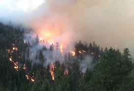 Wild Fires In Oregon Update by Burned Poor Planning And Tactical Errors Fueled A Wildfire