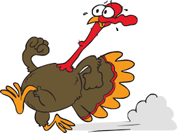 free funny thanksgiving pictures funny cartoon turkeys free download clip art free clip art