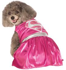 the top pet costumes for halloween