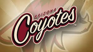 Arizona Coyotes azfamily com  TV